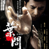 Movie Review: Ip Man