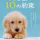 Movie Review: 10 Promises To My Dog